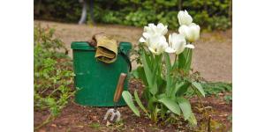 entretien-espace-vert-jardinier
