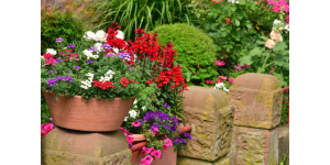 jardin pot fleur 1160x768