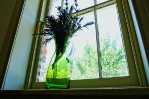 fenêtre vase