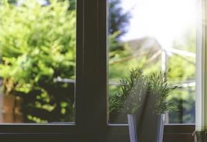 soleil-fenêtre